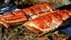 Sockeye salmon barbecued on cedar planks.